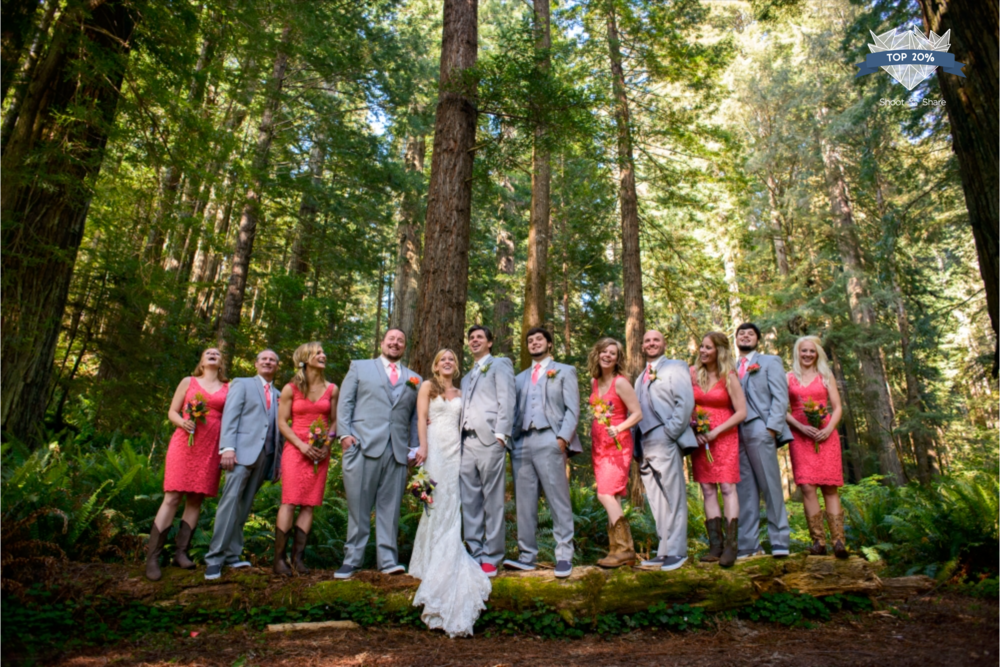 California Redwood Forest Wedding - The Wedding Party Category - 1,844/ 10,037