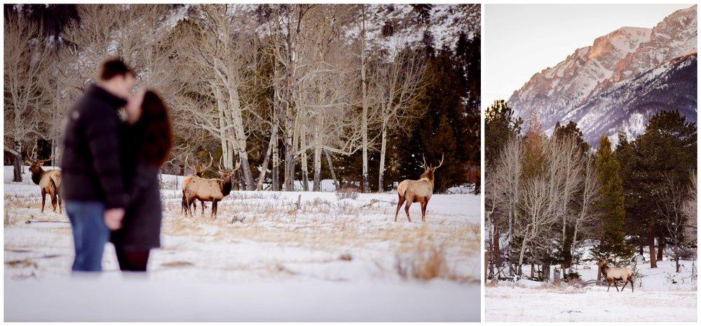Rocky-mountain-national-park-winter-engagement_0041.jpg
