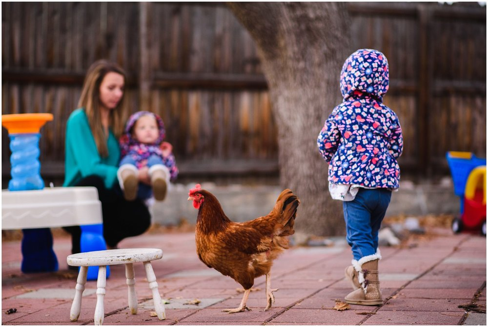 chickens and twins in documentary photo