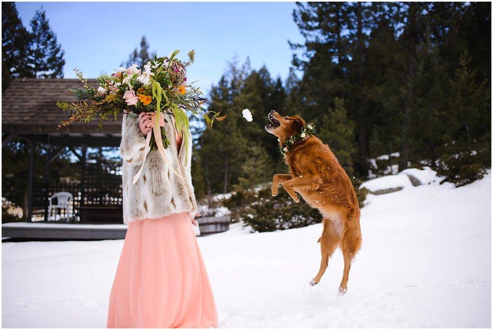 Evergreen-colorado-winter-boho-lesbian-wedding_0046.jpg