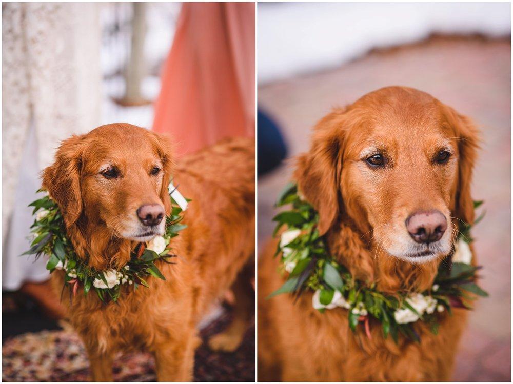 Evergreen-colorado-winter-boho-lesbian-wedding_0075.jpg