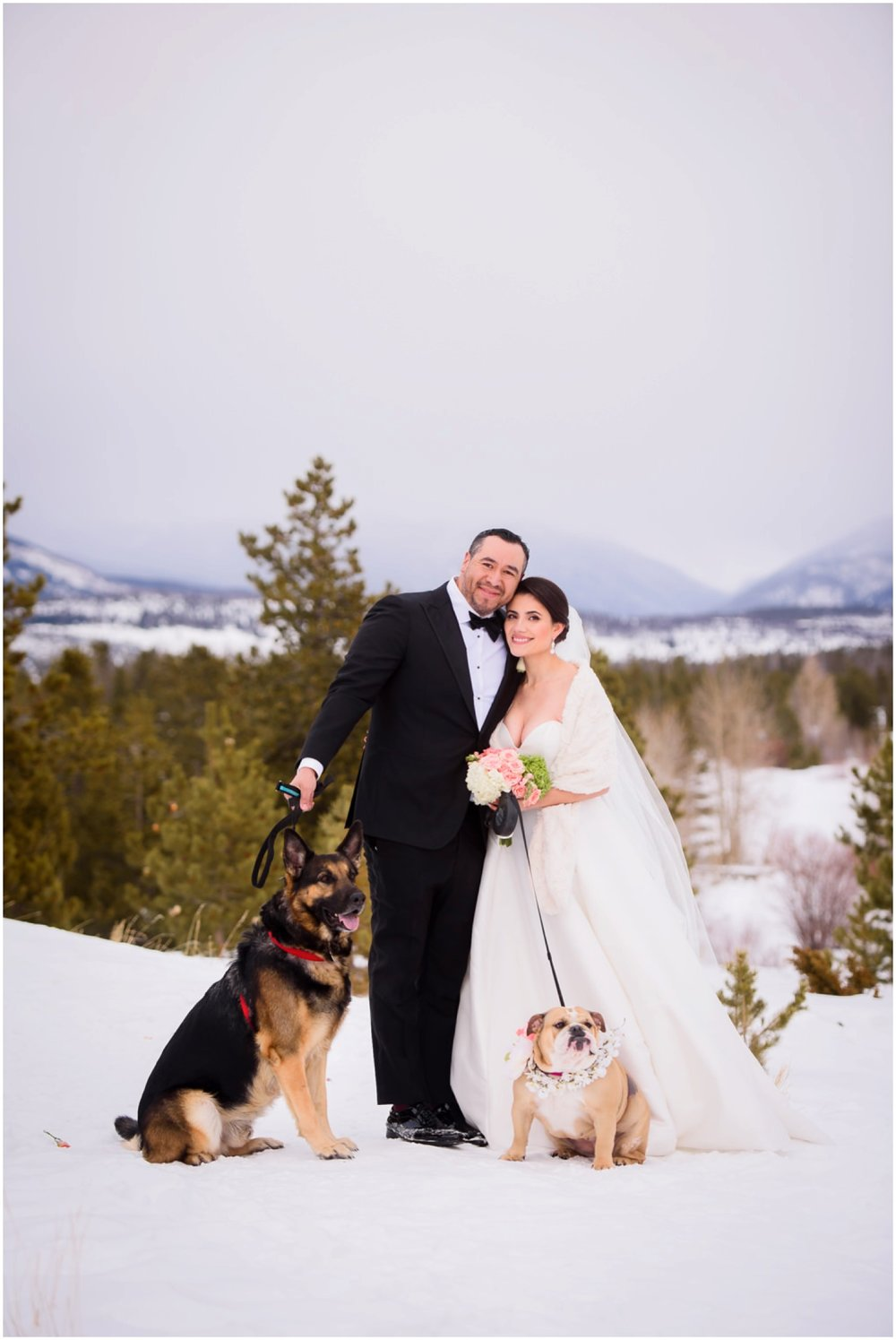 Bride and Groom with dogs winter wedding