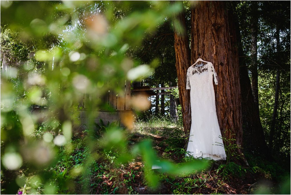 wedding dress hangs on Redwood Tree