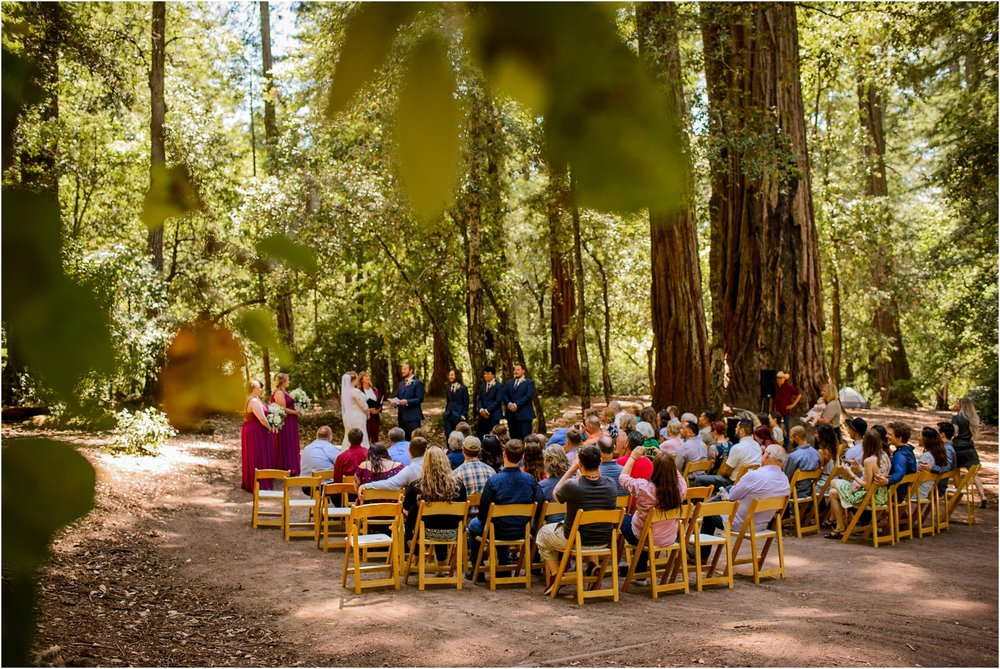 California Redwood Wedding Ceremony