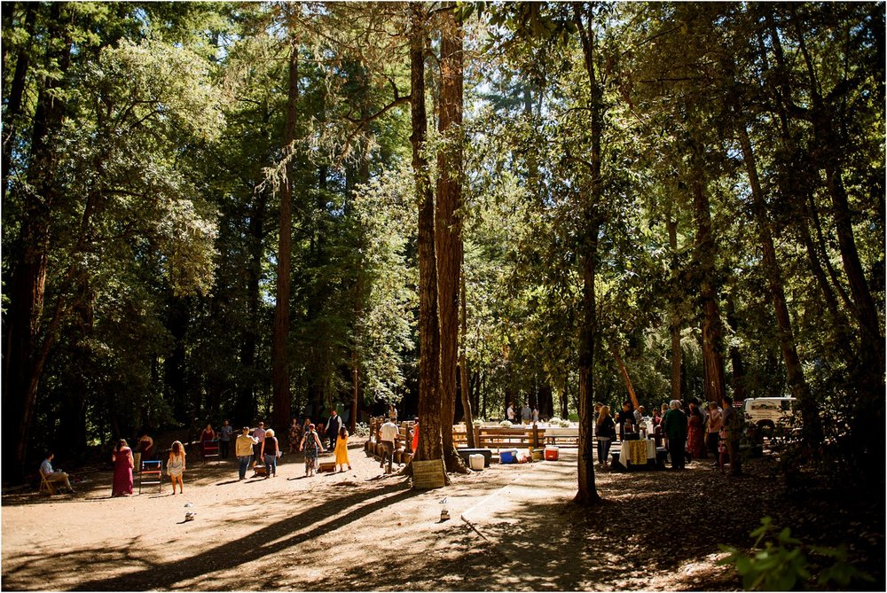 Redwood-Forest-California-Wedding-photography_0066.jpg