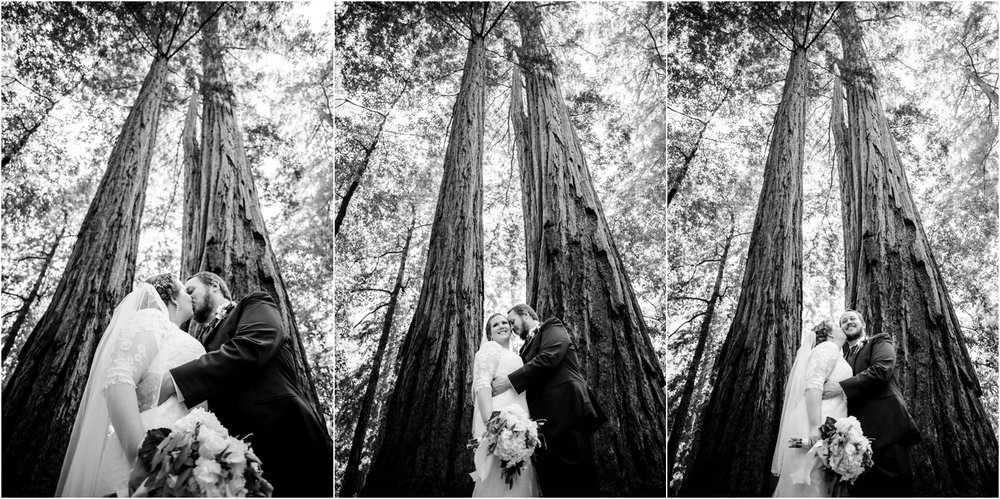 Redwood-Forest-California-Wedding-photography_0071.jpg