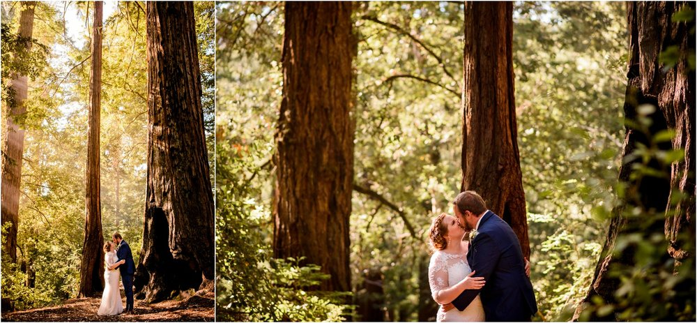 Redwood-Forest-California-Wedding-photography_0094.jpg
