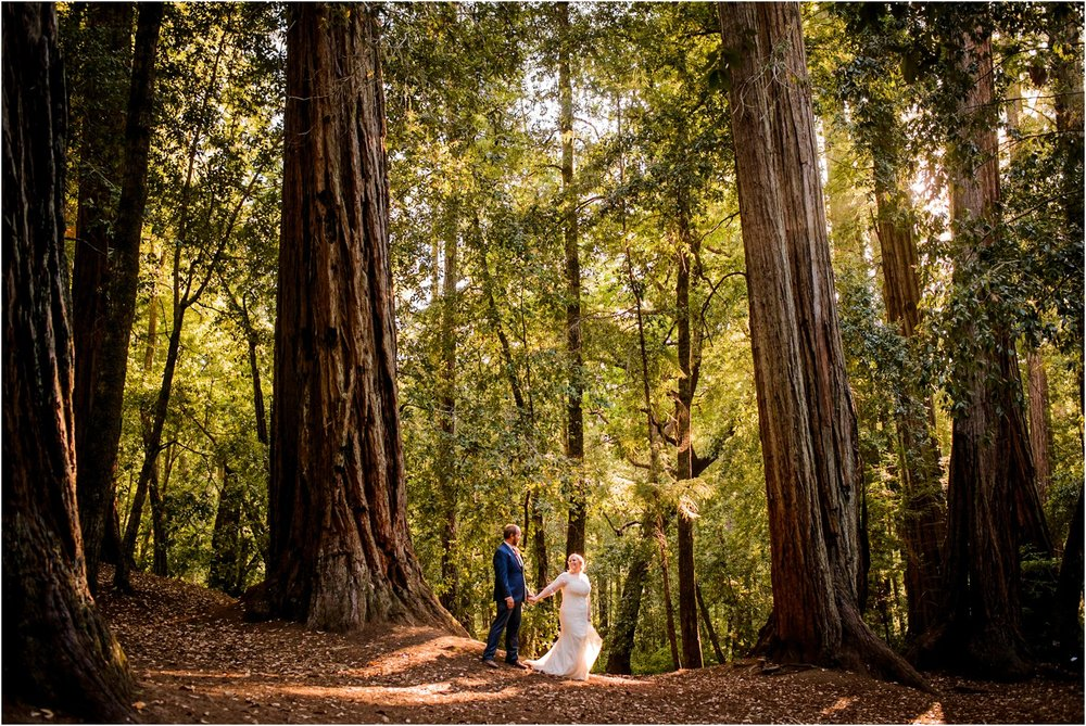 Redwood Forest sunset Wedding Photo