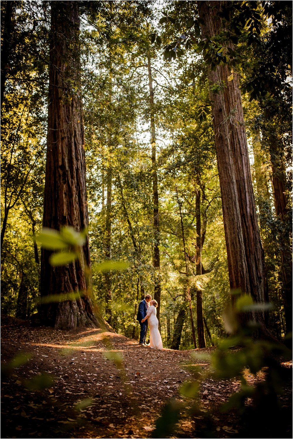 Redwood Forest Wedding