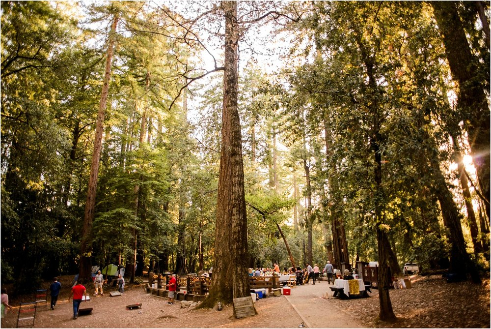 Redwood-Forest-California-Wedding-photography_0102.jpg