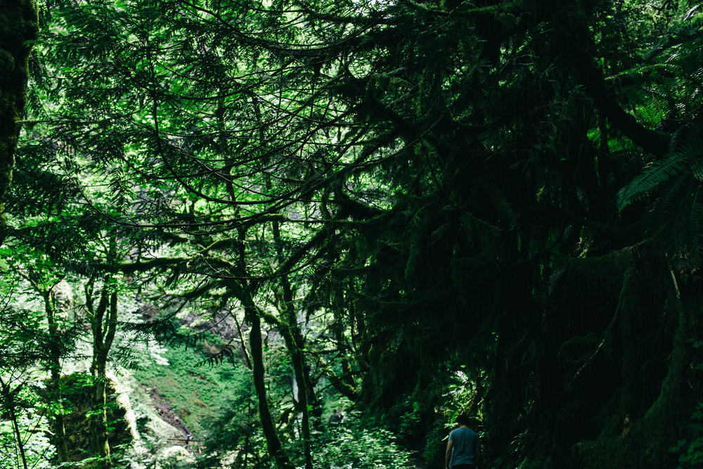 travel_portland-126.jpg