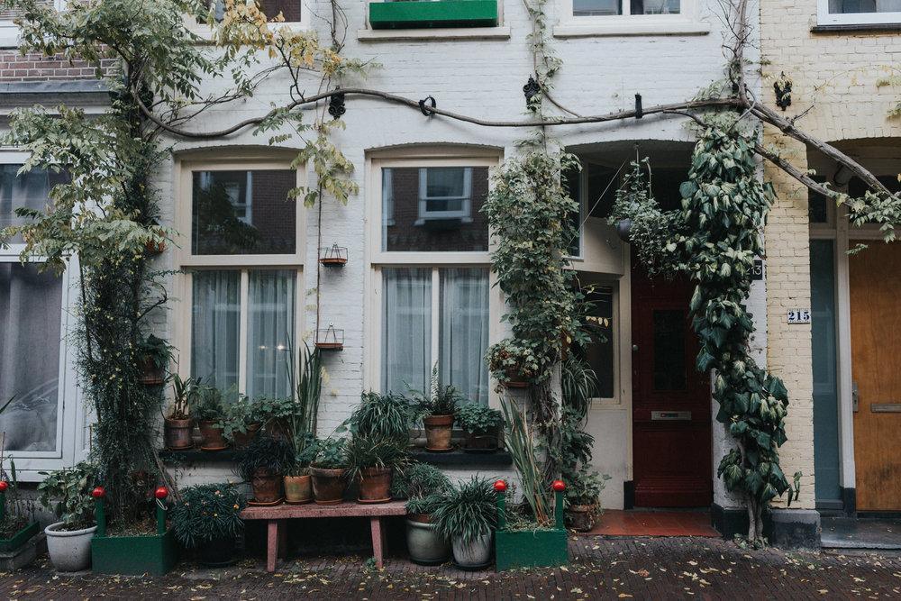 Green Exterior