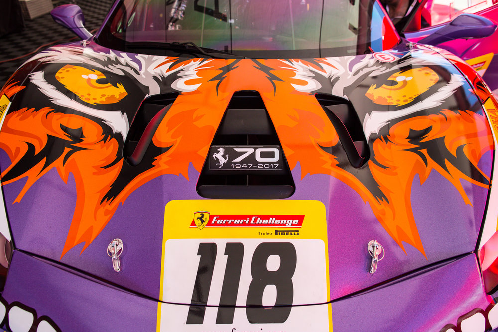 Ferrari Challenge 2017 WEB-5412.jpg
