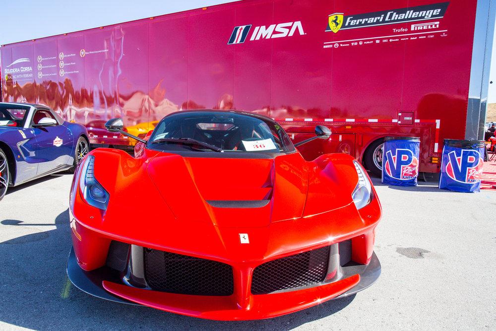 Ferrari Challenge 2017 WEB-5474.jpg