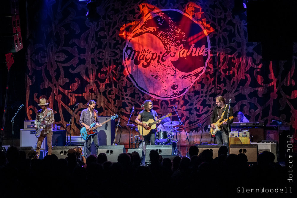 The Magpie Salute at The Norva