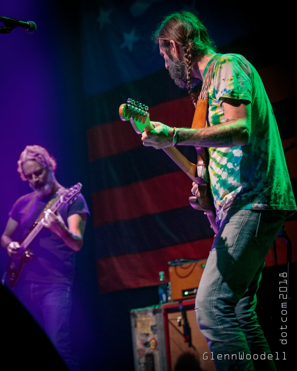 Chris Robinson Brotherhood - The Norva - 10-27-18 6.jpg