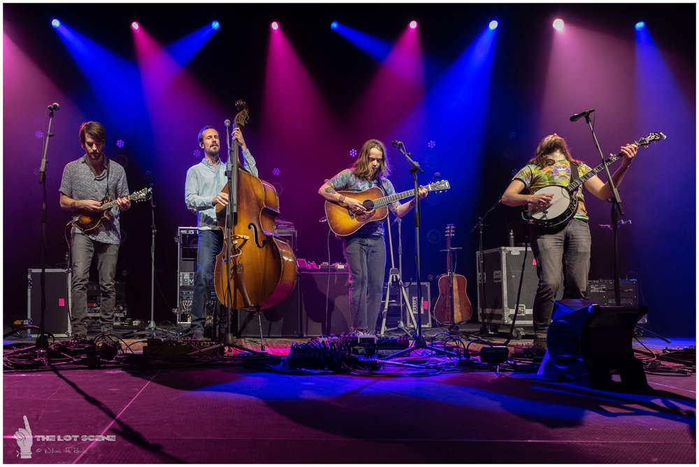 Billy Strings at The Anthem DC - February 2 2019 - 10.jpg