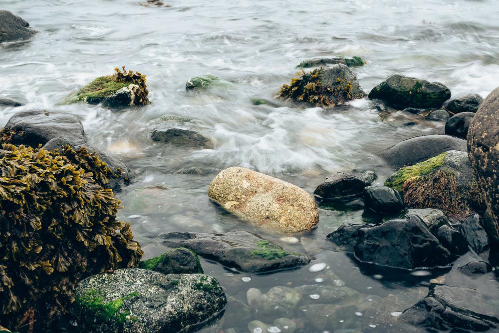 Cornwall 2015-82.JPG