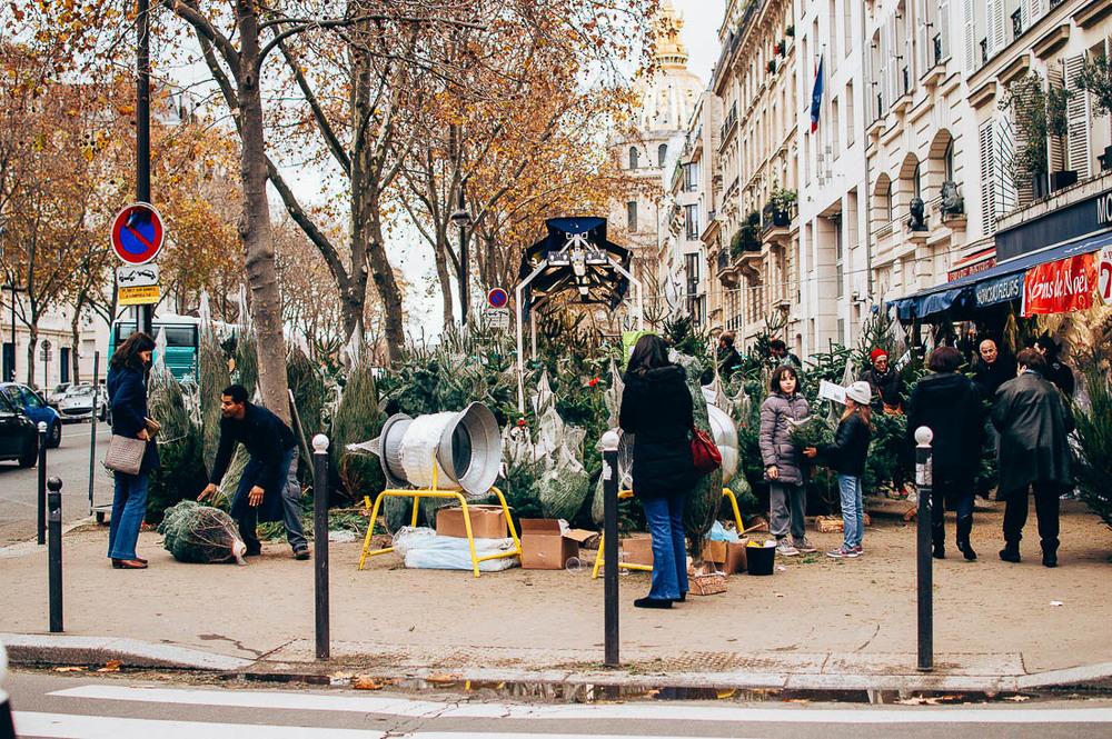 Paris 2015-14.jpg