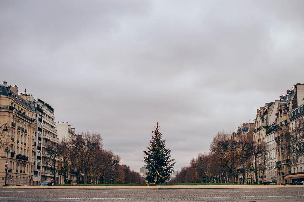 Paris 2015-17.jpg