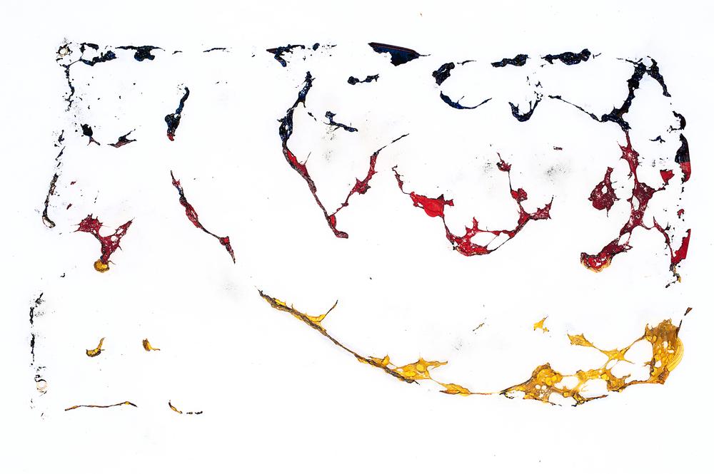 Flag #1 / C-print, 100x70cm, Framed