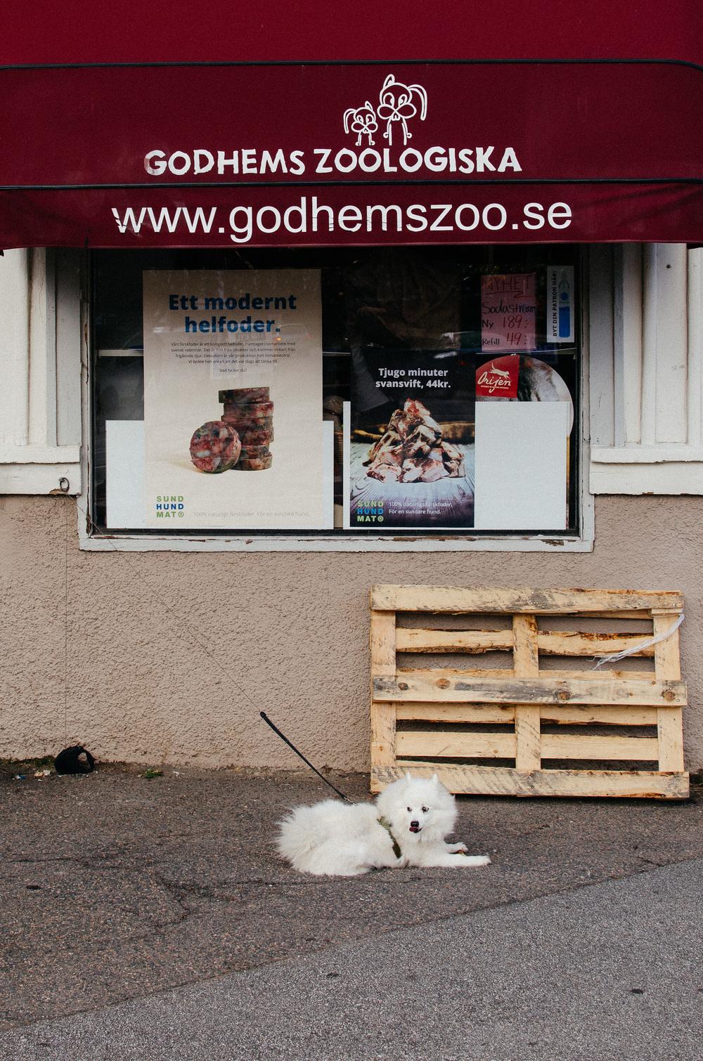 Gothenburg-12.jpg