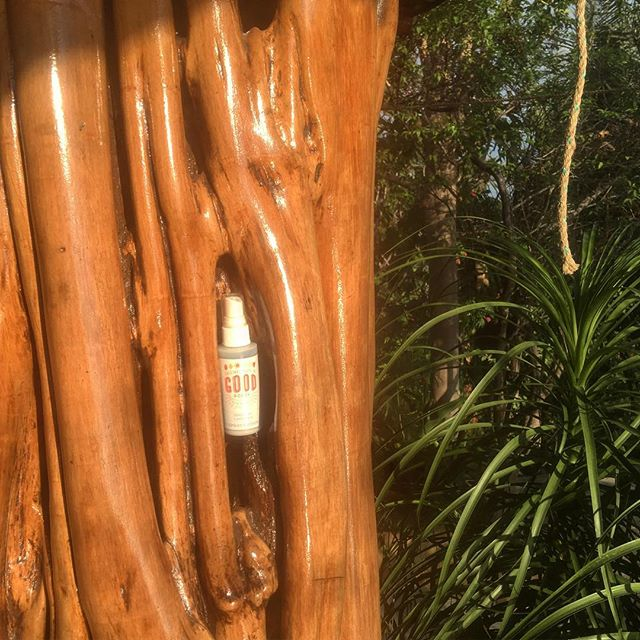 Hanging out in the rainforest with #OriginalGoodGoods 🔅🔆 all natural ✅ plant based ✅  #skincare #sunnydays #centralamerica #costarica #veganskincare #veganlifestyle #etsyshop #essentialoils #lavender #travel #familyvacation #springbreak #oliveoil #moisturizer #shoplocal #shopsmall #rainforest #plantbased #allnatural