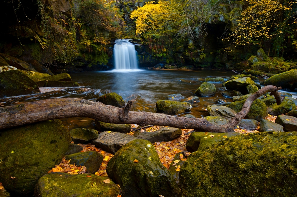 Thomason Foss Waterfall, Beck Hole by Colin Carter