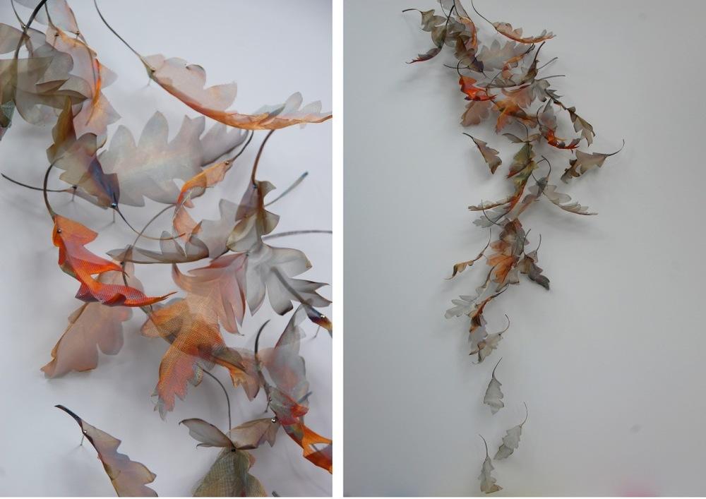 Falling Sudy Oak x2 emailjpg.jpg