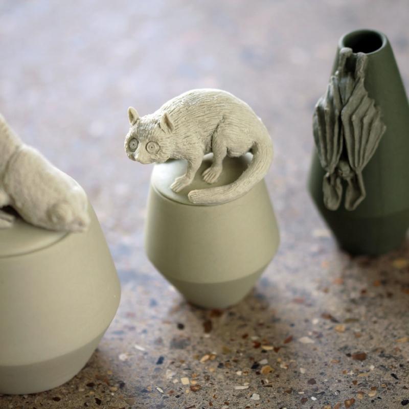 Claire's Mouse Lemur - £150.00