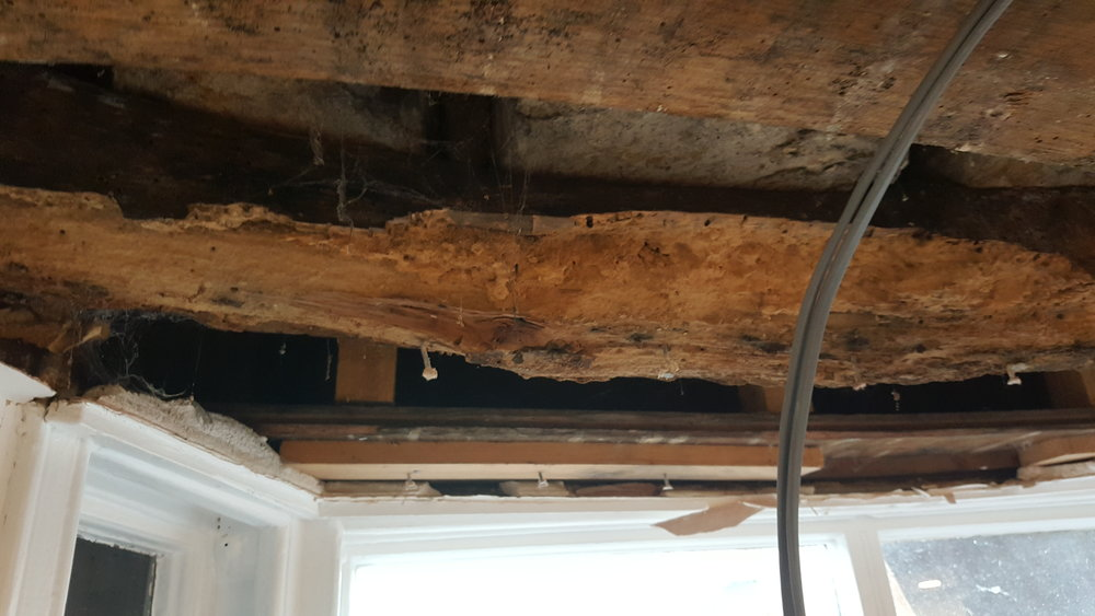Horrors! - This week we have identified two more areas in need of renovation with the stone work badly damaged. Yet another job for the cheerful rendering team! Then we found a very rotten beam that is fairly important in the structure which has to be replaced pretty quickly! Another job and more days to add to the pain!