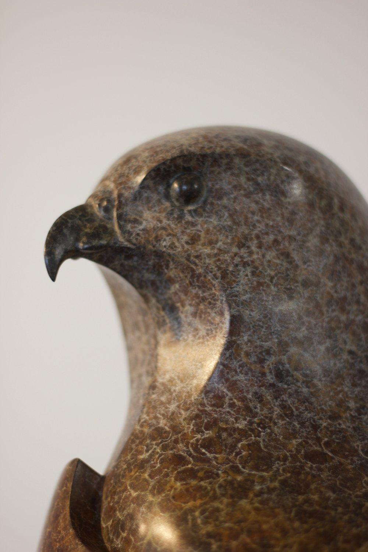 Red Kite - Bronze Sculpture - Edition 4 of 12
