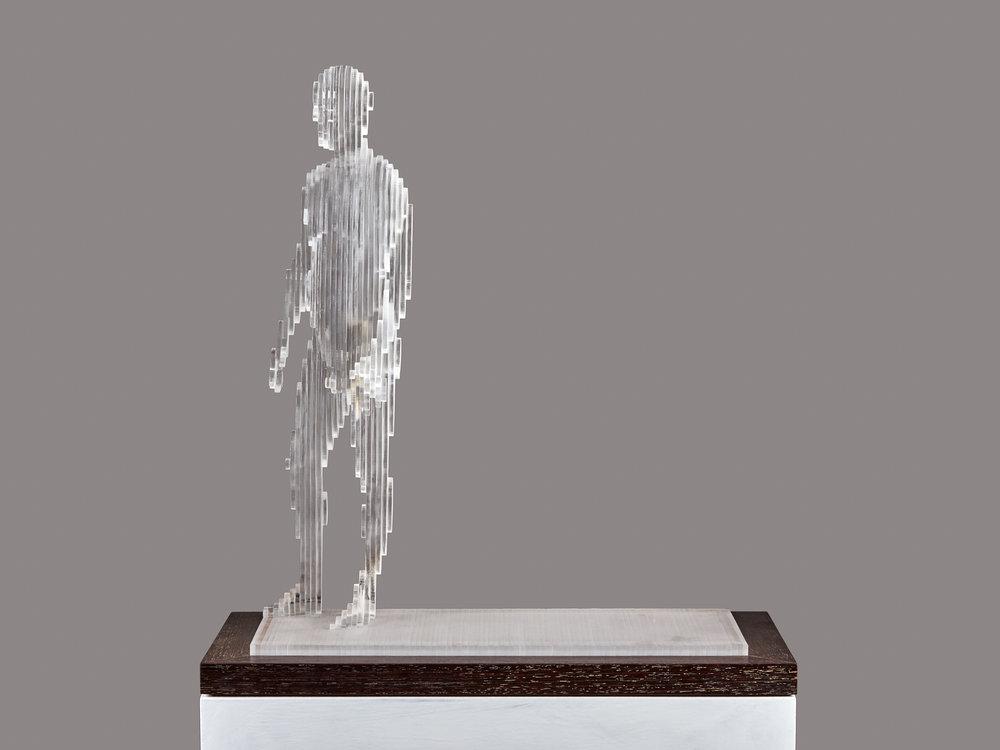2015 Me V 50cm x 45cm x 20cm extruded acrylic on wenge base .jpg