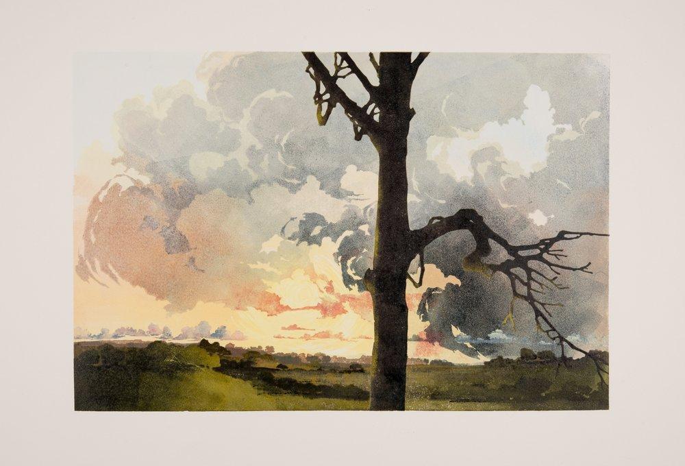 Vale Raking Light - £360