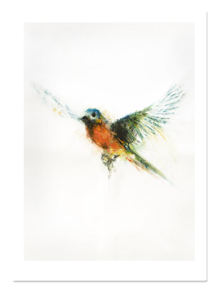 MMcC_Bluebird__limited edition print.jpg
