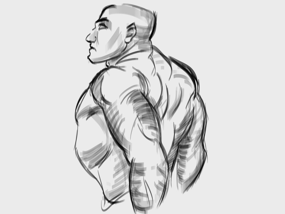 sketch 004.jpg
