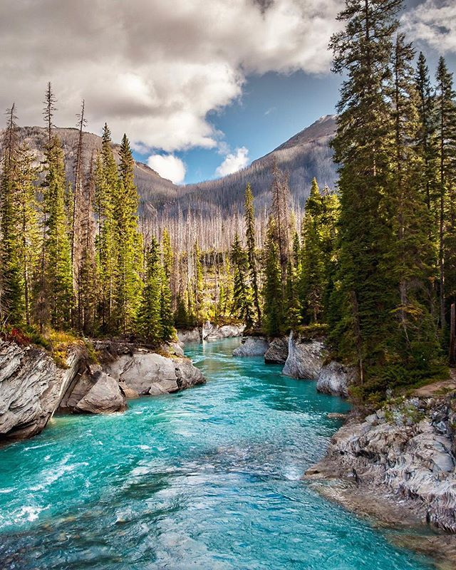 Who else wants to go on a lazy river rip ? British Columbia, Canada 🇨🇦🌲☀️ @imagesofcanada