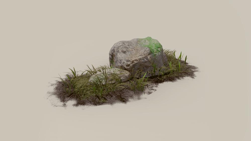 Rock&grass.jpg