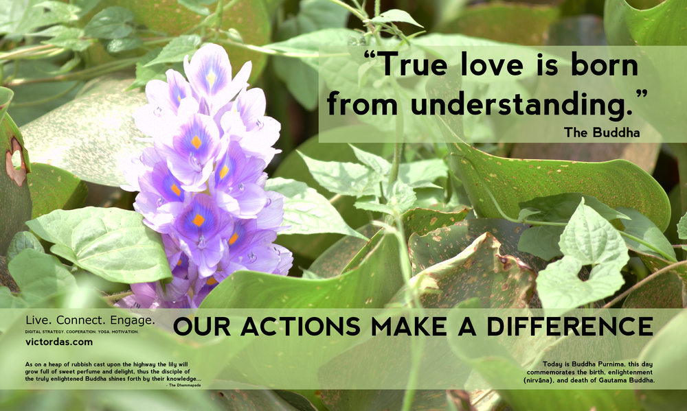Our Actions Make a Difference