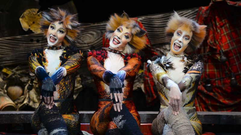 cats-the-musical-2016-credit-alessandro-pinna-800x450.jpg