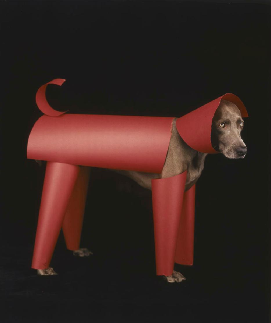 Red Toy by William Wegman, 2006