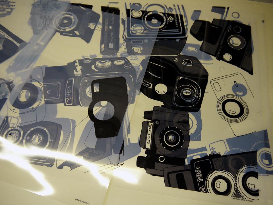 The positives for Camera by Kaylene Alder