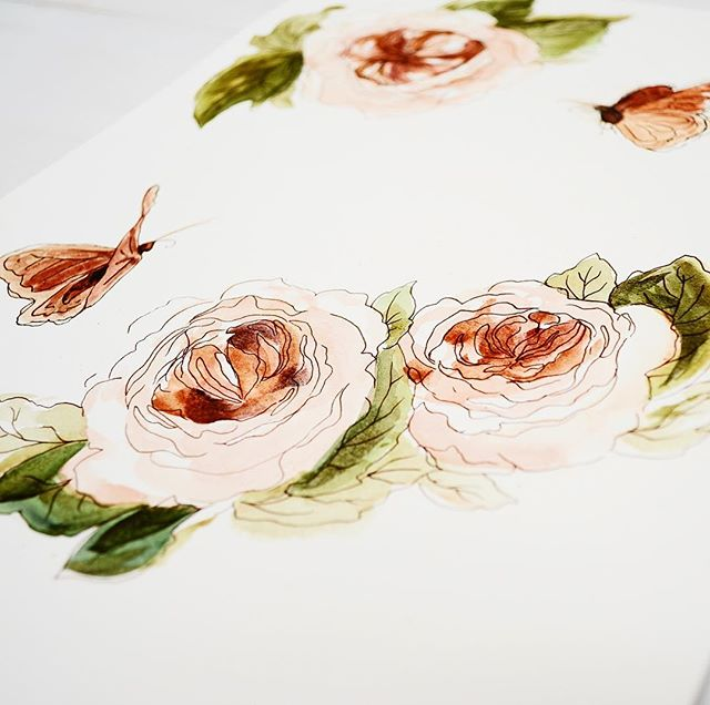 Watercolor Illustration of garden roses and butterflies for a wedding suite! 🌿🦋