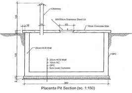 Blueprint for a placenta pit