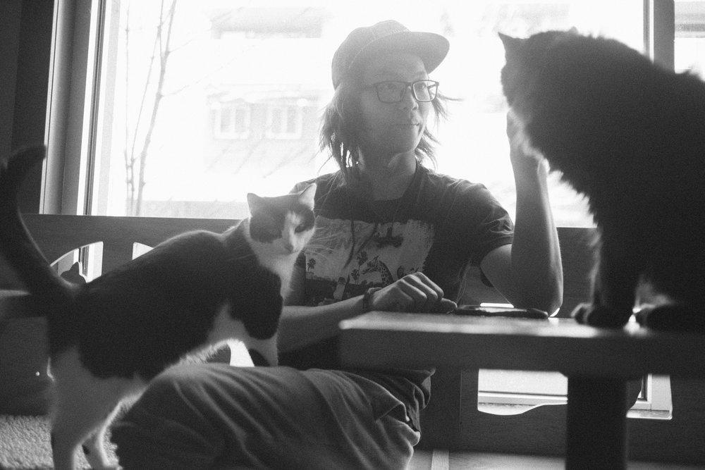 meow0039.jpg