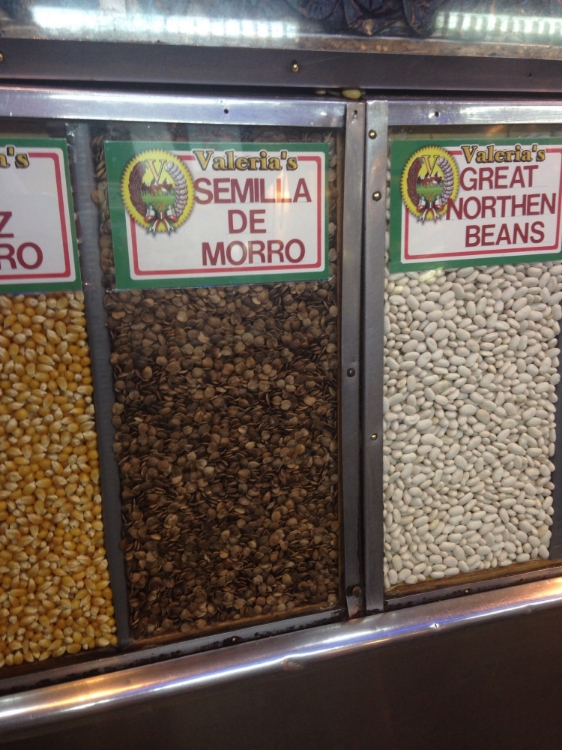 Seeds the horchata was made from.