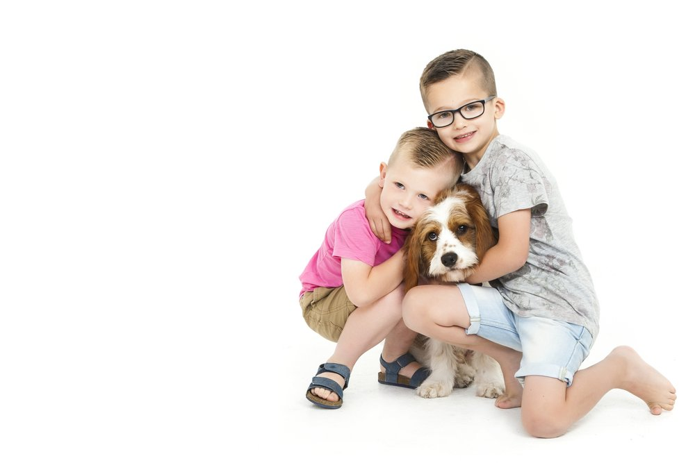 zigzag-photography-leicester-zig-zag-photographers-photo-studio-clarendon-park-queens-road-best-family-portraits-children-dog-animal-pet-brothers-ideas-props.jpg