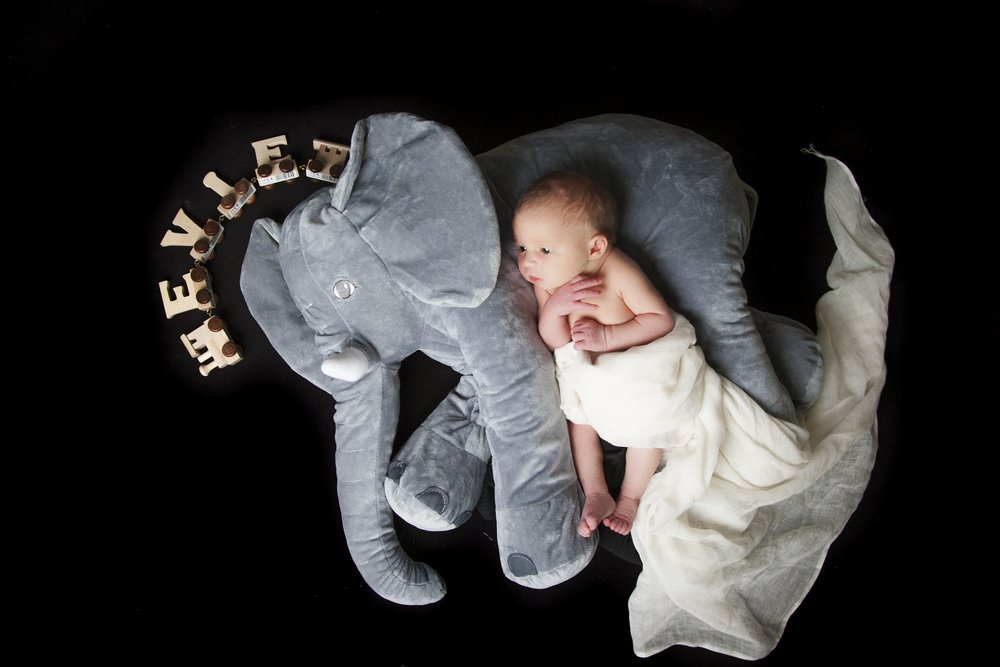 newborn-photographer-leicester-baby-photography-shoot-photo-props-elephant-ideas-props-zigzag-zig-zag.JPG