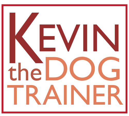 Kevin the Dog Trainer