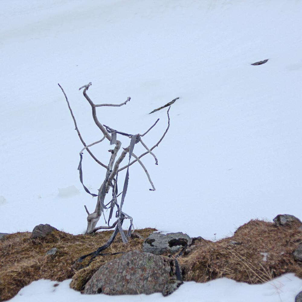 Icelandic sculpture